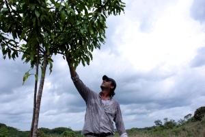 Mark van Batenburg 2013 - boswachter